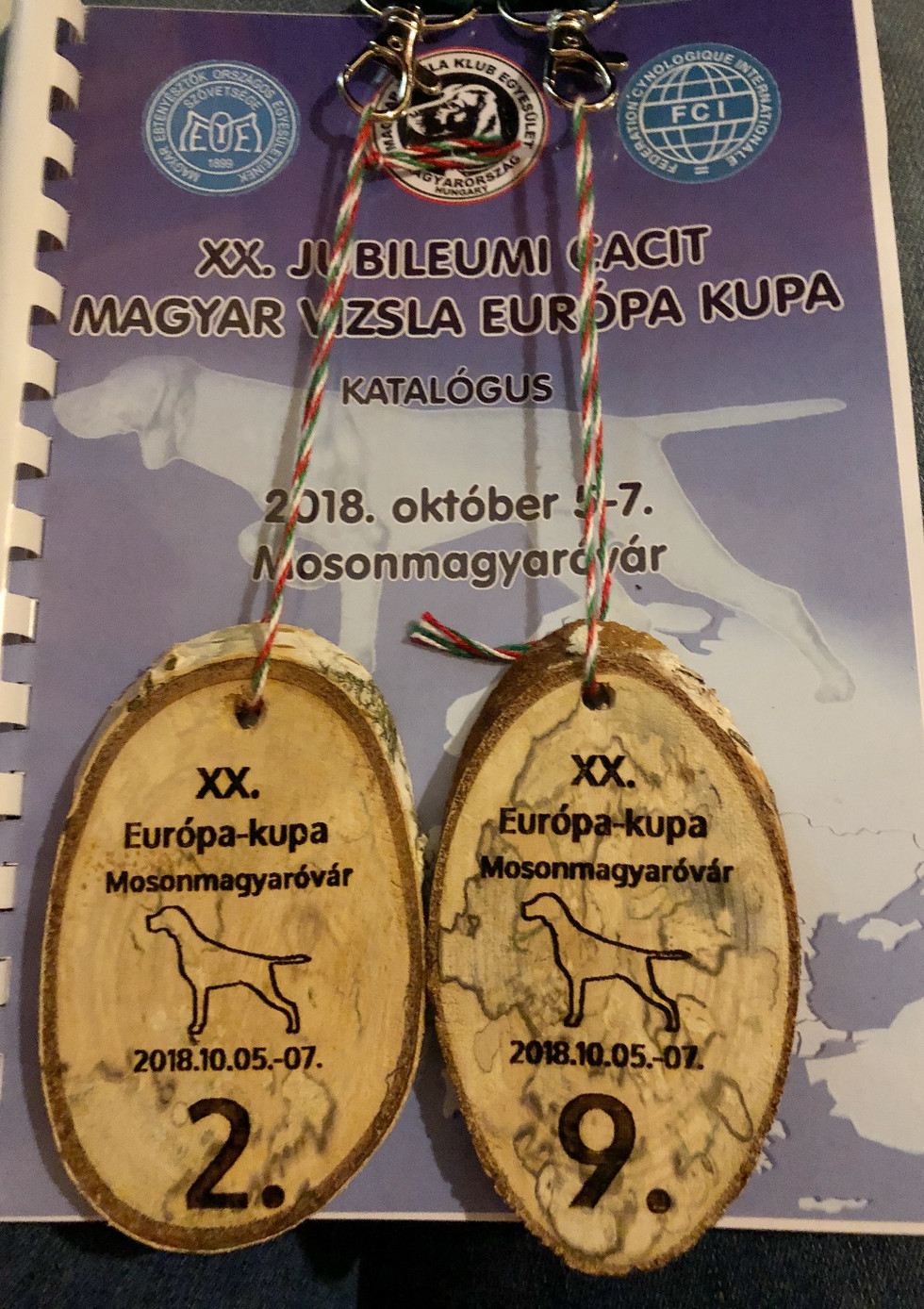 European Cup 5-7 October 2018 - Hungary