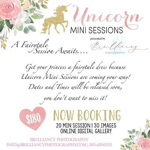 Unicorn Minis.jpg