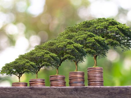 Nachhaltigkeit in der Immobilienwirtschaft – die Dynamik wächst!