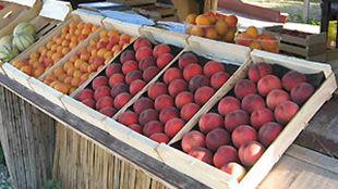 Cette entreprise familiale ardéchoise est devenue la référence locale en production de fruits frais et mûrs à point.