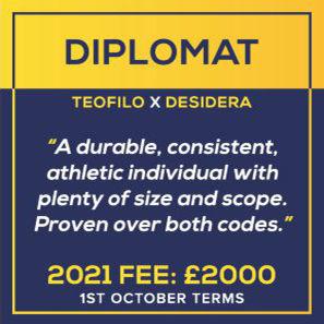 diplomatnar.jpg