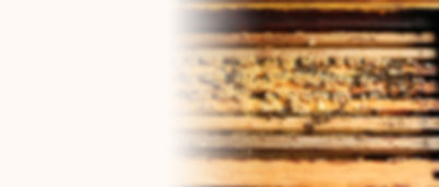 Hofladen Langmaul Honig