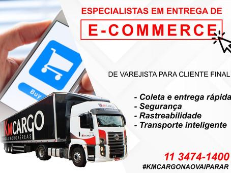 ESPECIALISTAS NA ENTREGA DE E-COMMERCE