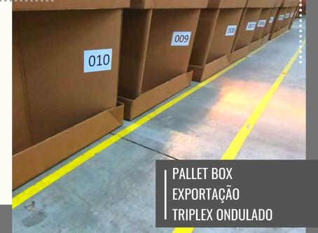 PALLET BOX EXPORTAÇÃO TRIPLEX ONDULADO