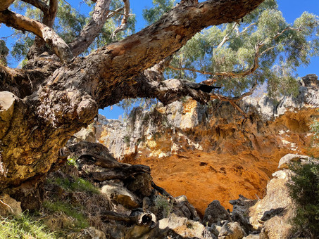 Visit the Stockyard Gully Cave with Jurien Bay Adventure Tours