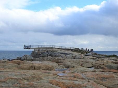 Admiring the power of nature at The Gap and Natural Bridge, Western Australia