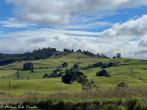 10 things to see and do in Wilmot, Tasmania, Australia