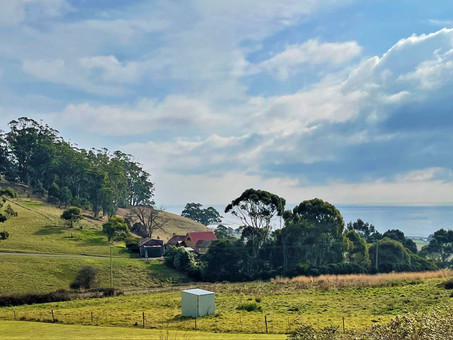 Beautiful flowers and a delightful tearoom at Fuchsia Fantasy in north west Tasmania, Australia