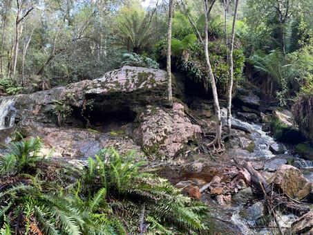 Redwater Creek Waterfall - Sheffield, Tasmania, Australia