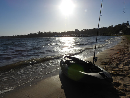 I discovered the joy of kayaking on the Swan River