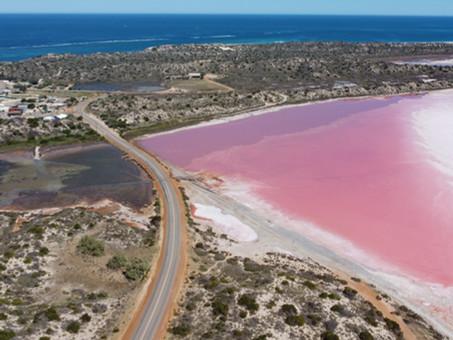 A bubblegum pink lake?