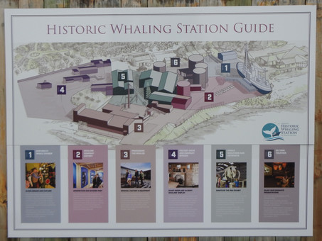 Albany's Historic Whaling Station, Western Australia