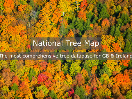 Bluesky appoints Europa Technologies as reseller for National Tree Map™