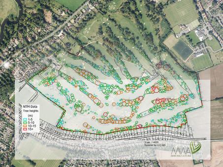 MWA Arboriculture uses Bluesky National Tree Map to Inform Tree Condition Surveys