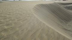 Belgien liefert Sand in die Wüste