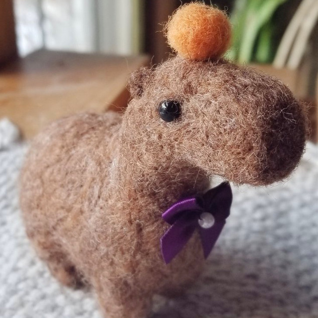 Capybara Felt front