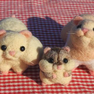 Pufe, Pastel, and Poyo