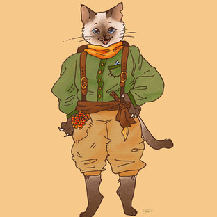 Marigold the Siamese Cat