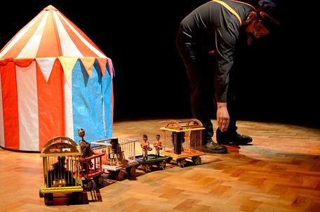 El Pequeño circo, colibrí (2).jpg
