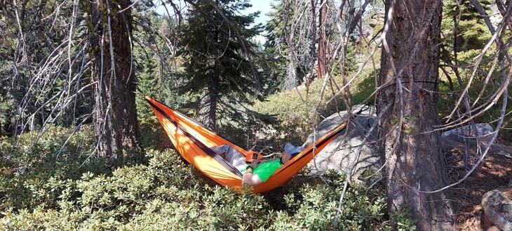 Mario resting in hammock