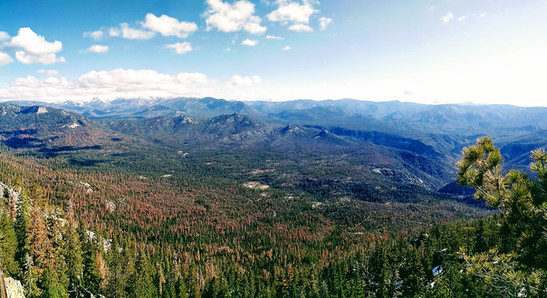 Needles Lookout Trail