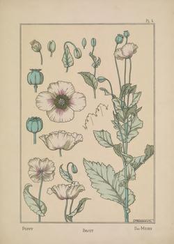 DD3_La plante et ses applications ornementales, by Grasset, Eugène (1896)_Page_017.png