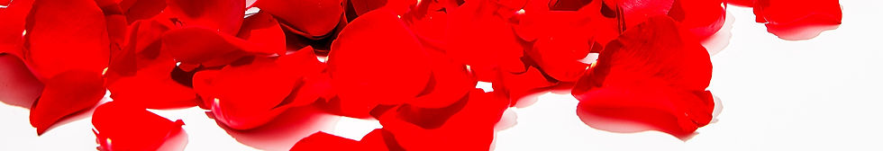 glissant-holiday-196%20copy_edited.jpg