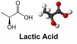 Lactic Acid for healthy vaginal pH