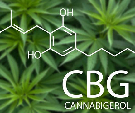 CBG-Cannabigerol-Molecule-730x400.jpg