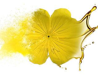 primrose oil vaginal lubricant