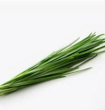 Allium%20tuberosum%20extract_edited.jpg