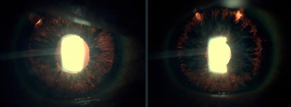 BLOG-pigmentario11.jpg