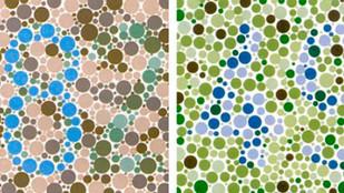 Tests de visión de los colores
