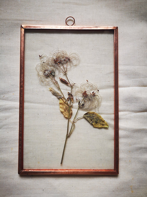 Handmade Copper Frame with 'hairy' plant