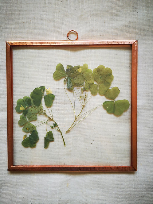 Copper frame clover leaves
