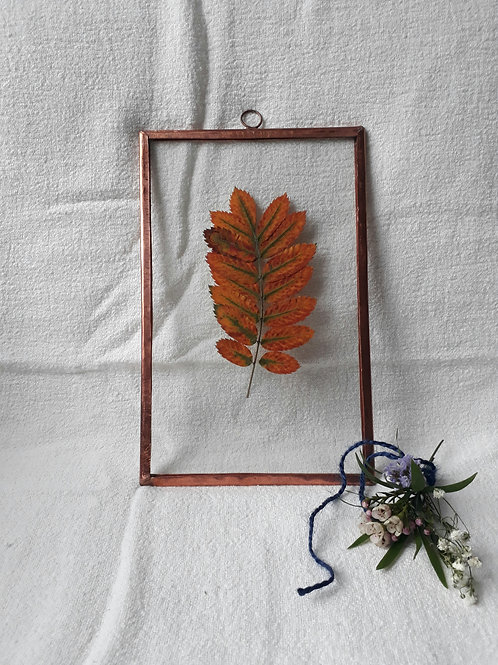 Frame with autumn leaf