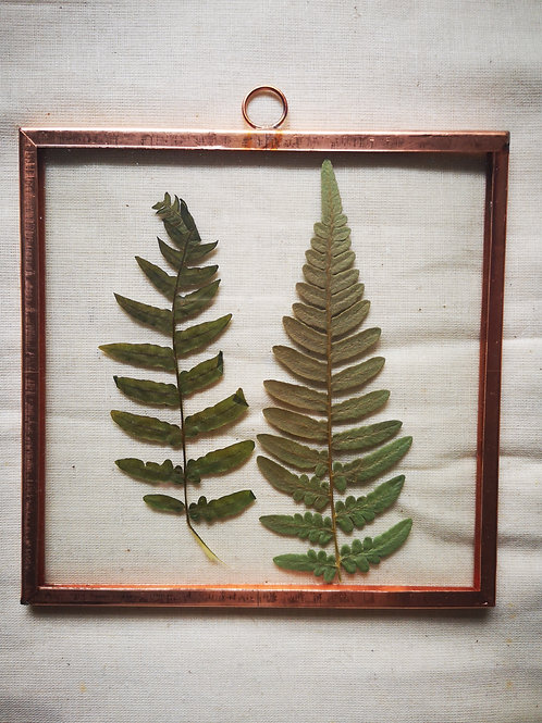 Copper Frame with fern
