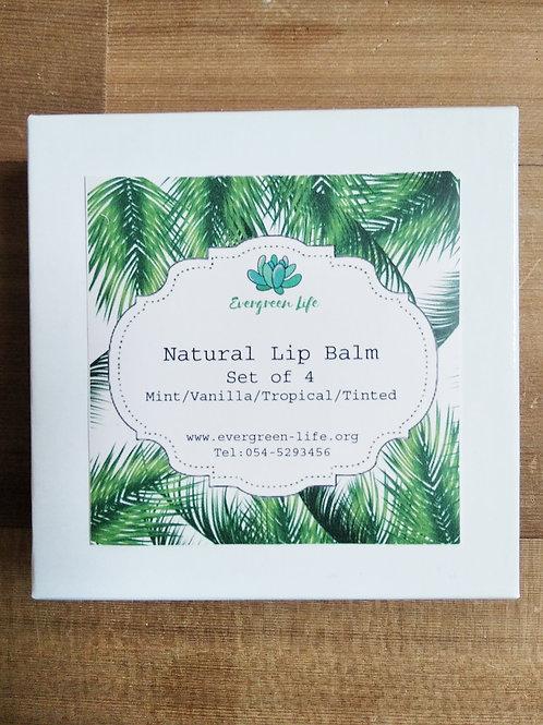 Natural Lip Balm set of 4