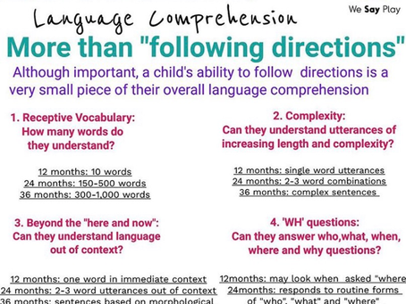 Four important aspects of Language Comprehension