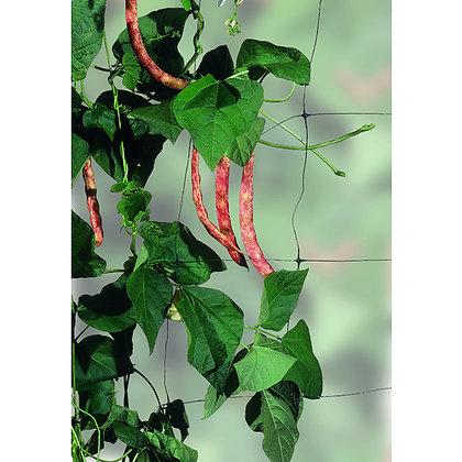 Plantenett 153 cm x 100m