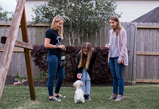 Family is learning how to train their dog in the backyard.