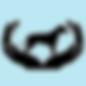 SCBT Logo.png