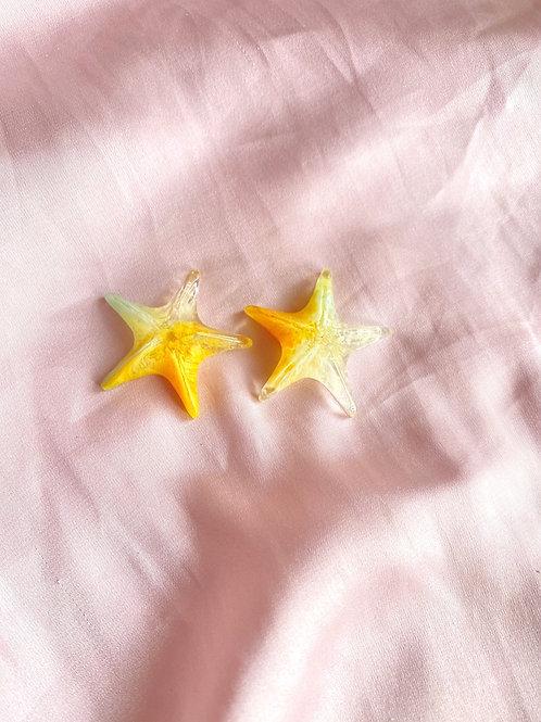 Starfish resin stud