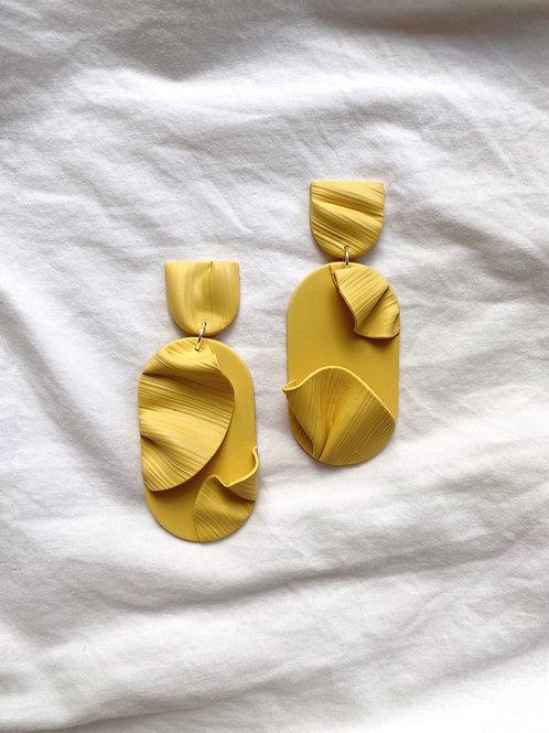 Decibel - Daffodil