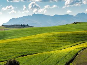 Agroécologie : de quoi parle-t-on ?