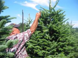8-15-05 Tree Farm (4)