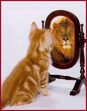 confiance en soi.jpg