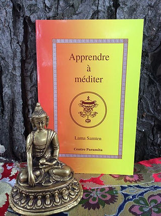 Livre_apprendre_à_méditer.jpg