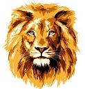 CAT_Lion.PNG
