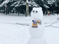 更新:温哥华多所大学延长寒假,UVic跟进